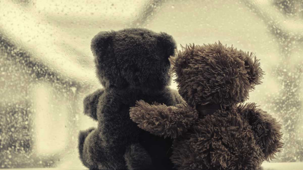 two teddybears sitting close to each other in front of a window with rain outside