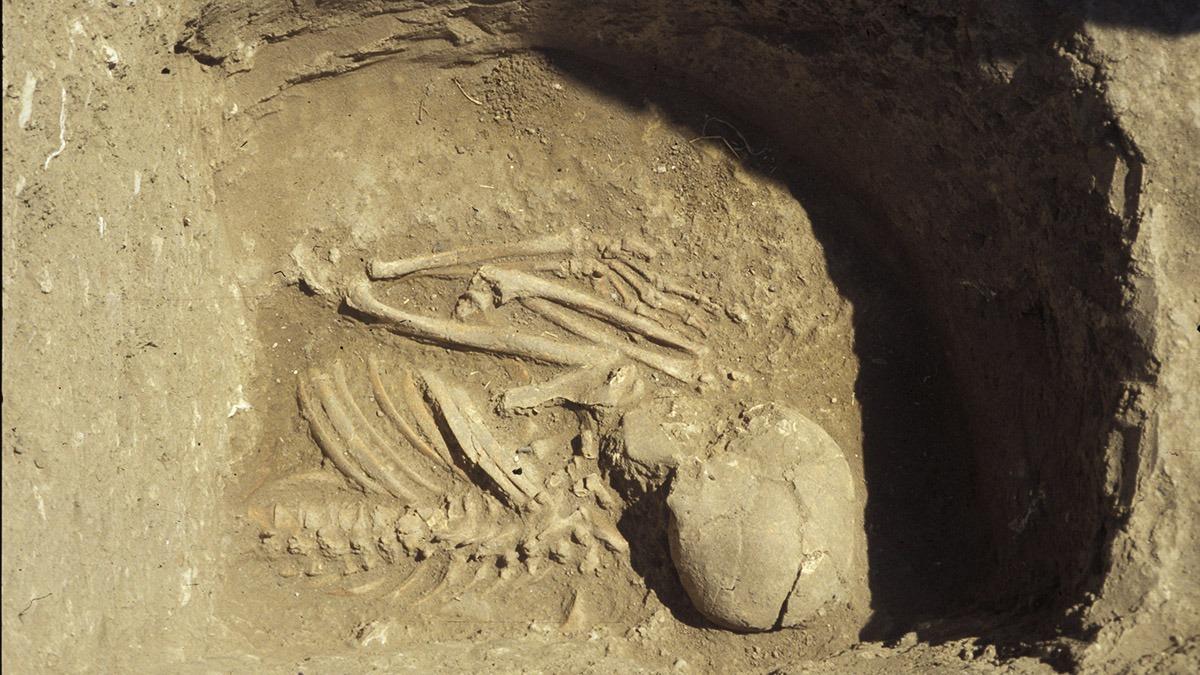 160105_Analysed_grave_6