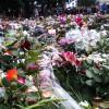 Blommanifestation i Oslo några dygn efter attentaten. Bild: Wikipedia