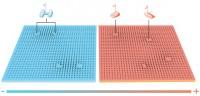 Fasövergång. Den inträffar när materiefaserna övergår i varandra, som när is smälter till vatten. Med hjälp av matematikens topologi beskrev Kosterlitz och Thouless en topologisk fasövergång i ett tunt skikt av mycket kall materia. I kylan bildades virvelpar som plötsligt löstes upp vid temperaturen för fasövergången. Det blev en av 1900-talets viktigaste upptäckter inom den kondenserade materiens fysik. (Illustration: Johan Jarnestad)