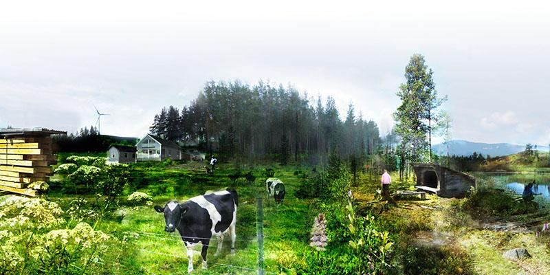 """Scenario 2: """"Levande landsbygd"""" kännetecknas av mångfald av skogliga värden, entreprenörskap, lokal förädling och leva nära naturen. Fotomontage: Charlotta Gard"""
