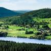 Levande landsbygd och välmående skogslandskap. Foto: Mikael Damkier
