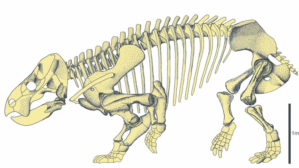 Hur dog dinosaurierna ut