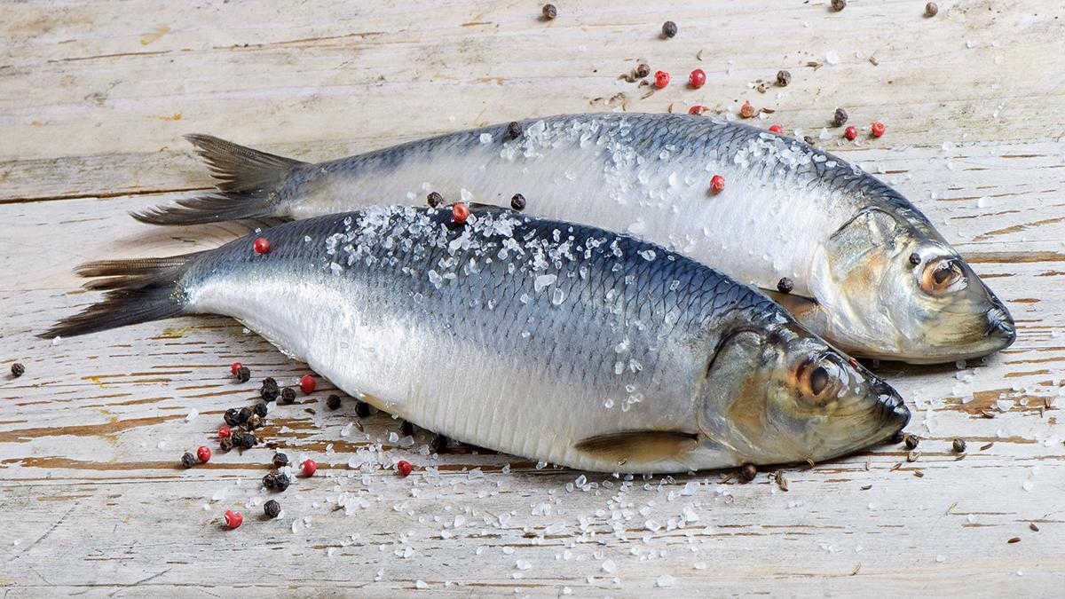 hur ofta ska man äta fisk