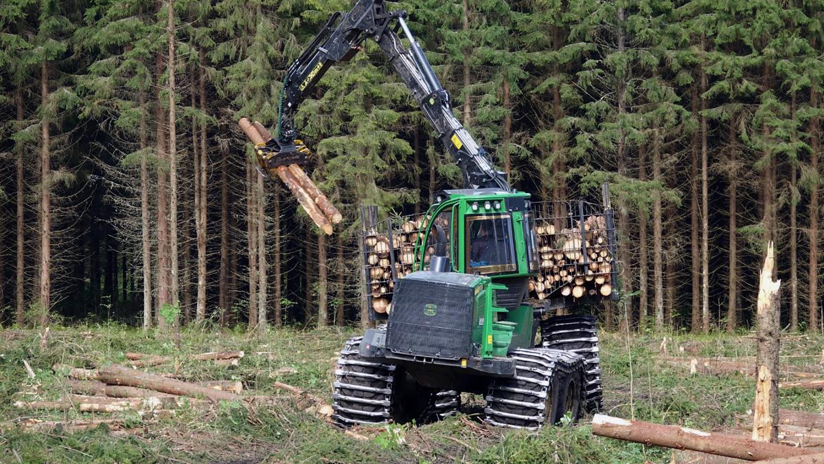 Bild på skogsmaskin.