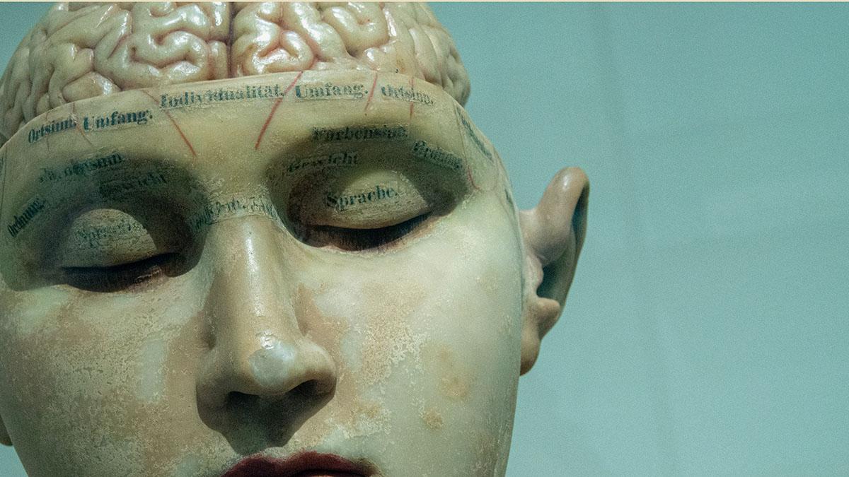Avbildning inuti nervceller kan avslöja vad som triggar Alzheimers