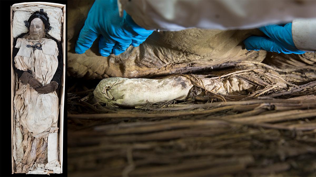 Peder Winstrup i kistan, och fostret som hittades under hans ben.